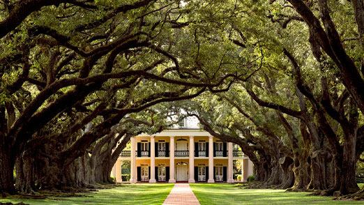 New-Orleans-Plantations